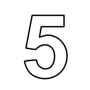 Team5